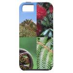Kiwiana New Zealand native flora iPhone 5 Cases