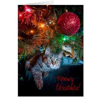 Kizmet the Kitten Holiday Greeting Card