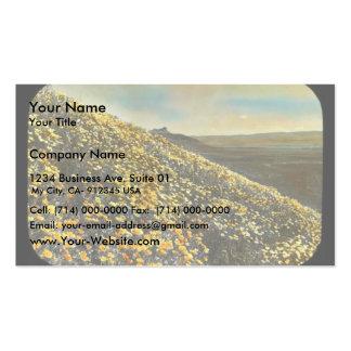 Klamath Marsh Business Card