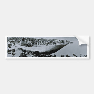 Klamath Native American dug out canoe Bumper Sticker