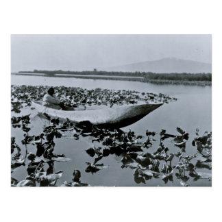Klamath Native American dug out canoe Postcard
