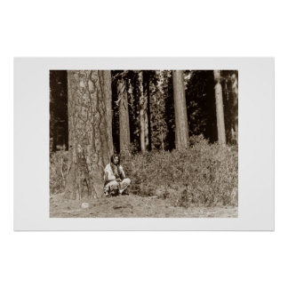 Klamath Native American Indian man Ponderosa Pines Poster