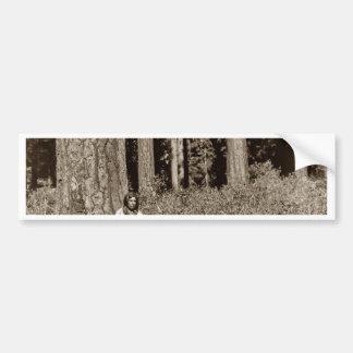 Klamath Native American Indian Ponderosa Pine Car Bumper Sticker