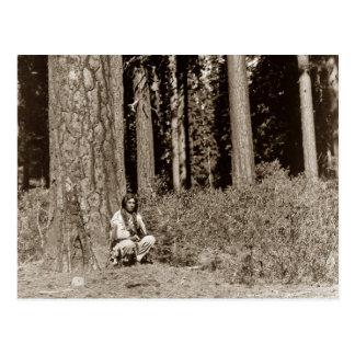 Klamath Native American Indian Ponderosa Pine Postcard