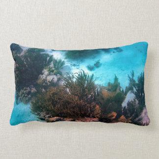 Klein Bonaire Reef Lumbar Pillow