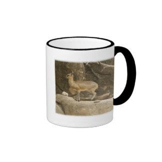 Klipspringer Mugs