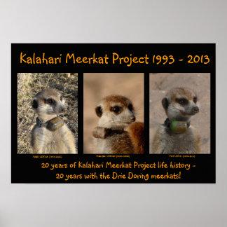KMP 20th Anniversary Poster