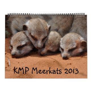 KMP Meerkats 2013 Calendar