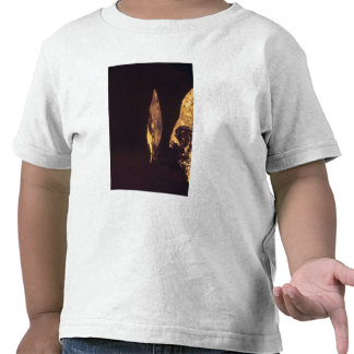 Knapped axe or spear head t shirts