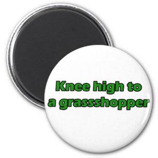 Knee high to a grasshopper 2 inch round magnet