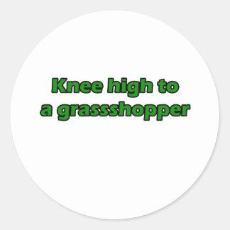 Knee high to a grasshopper classic round sticker
