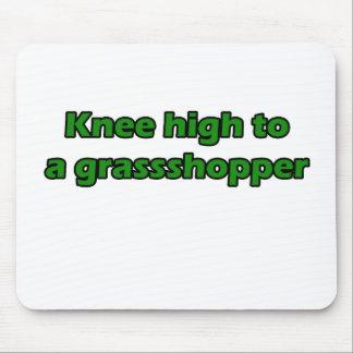 Knee high to a grasshopper mouse pad