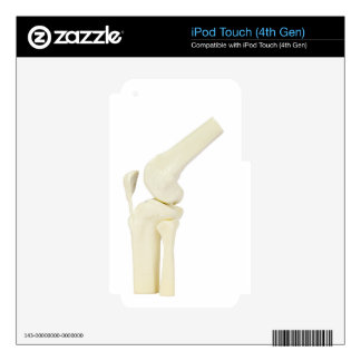 Knee joint model of human leg iPod touch 4G decal