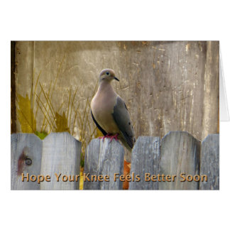 Knee Surgery Get Well Soon Love Dove Greeting Card