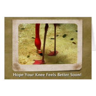 Knee Surgery Get Well Soon Pink Flamingo Greeting Cards