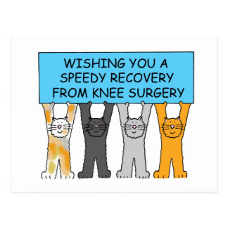 Knee surgery speedy recovery with cats. postcard