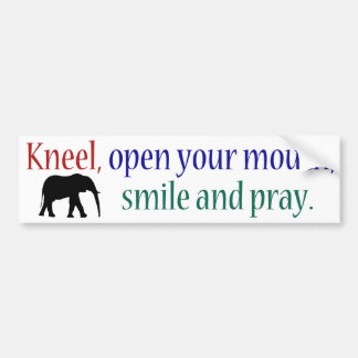 Kneel WFE Color Bumper Sticker
