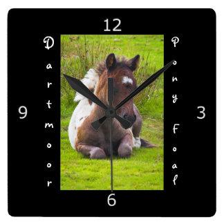 Kneeling Dartmoor Pony Foal Square Wall Clock