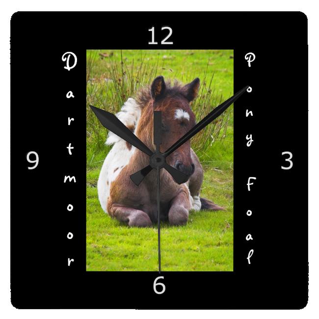 Kneeling Dartmoor Pony Foal Wallclock