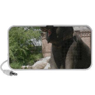 Kneeling Elephant Laptop Speakers