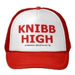 Knibb High Academic Decathlon '95 Hat