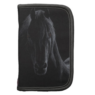 Knight Horse Collection Organizer