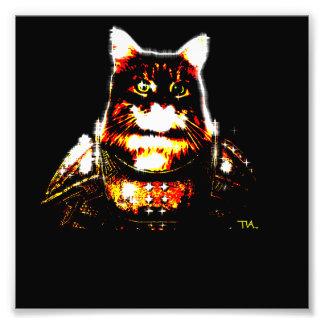 knight kitty cat photo print