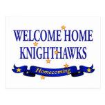 Knighthawks casero agradable tarjeta postal