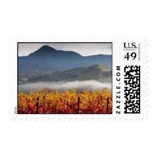 Knights Valley View Stamps