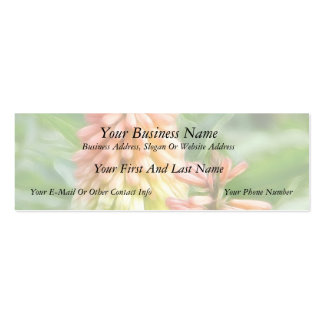 Kniphofia - Red Hot Poker Business Card Templates