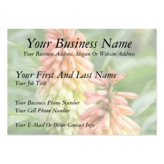 Kniphofia - Red Hot Poker Business Cards
