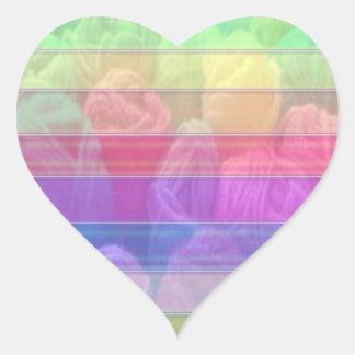 Knit Club - Rainbow Woolen Balls Heart Sticker