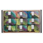 Knitter's case iPad folio cases