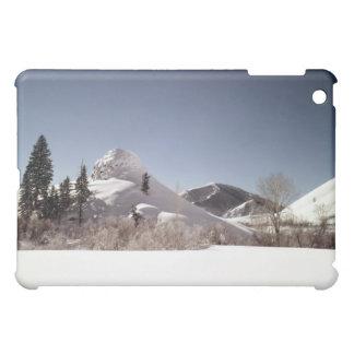 Knob Hill Case For The iPad Mini