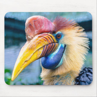 Knobbed Hornbill Mouse Pad