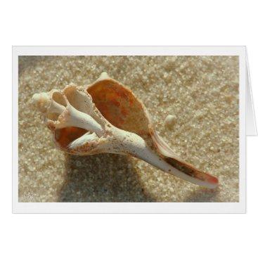 Beach Themed knobbed whelk card