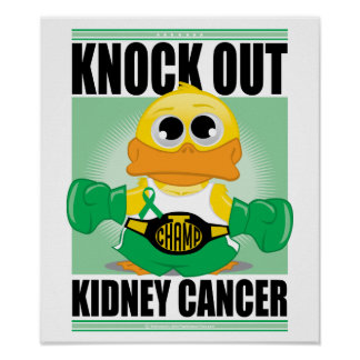 Knock Out Kidney Cancer Poster