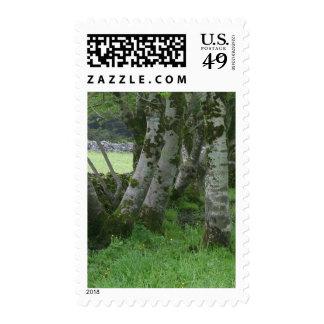Knocknara Ireland Fences Fields Stamp