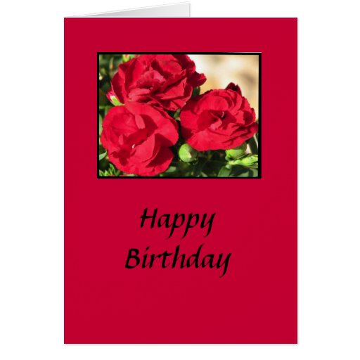 Knockout Rose Birthday Card
