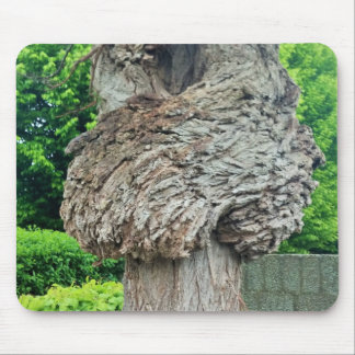 Knot on Tree Trunk, Knar, Nature Green Mouse Pad