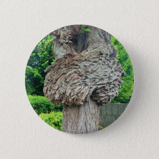 Knot on Tree Trunk, Knar, Nature Green Pinback Button