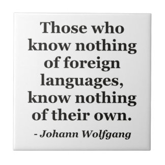 Know nothing of foreign languages Quote Tile