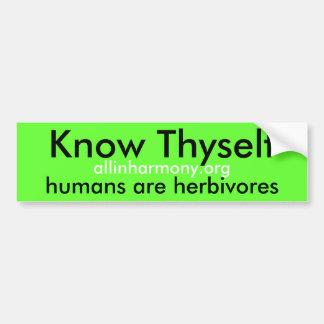 Know Thyself Bumper Sticker