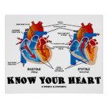Know Your Heart (Diastole Systole) Print
