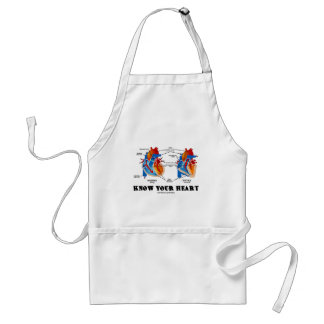 Know Your Heart (Heart Anatomy) Adult Apron