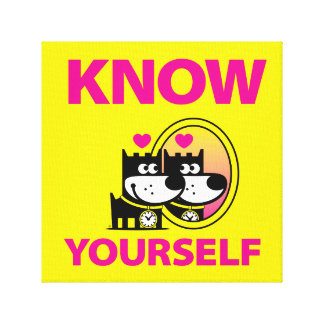 Know Yourself Canvas Print