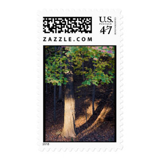 knowledge and enlightenment postage stamp