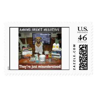 Knowledge Dog Anions aren't negative Stamps