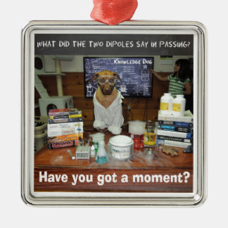 Knowledge Dog Dipole Moment Metal Ornament