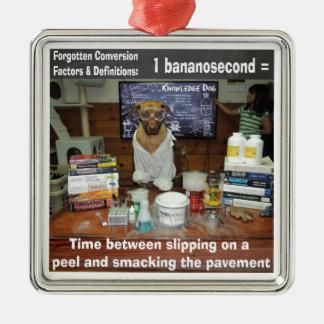 Knowledge Dog Forgotten Conversions Bananosecond Metal Ornament
